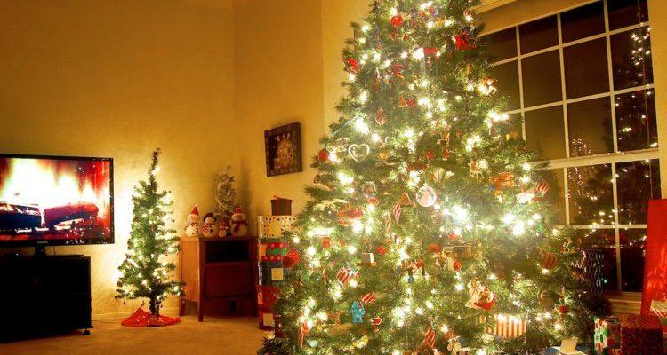 Los arboles de navidad